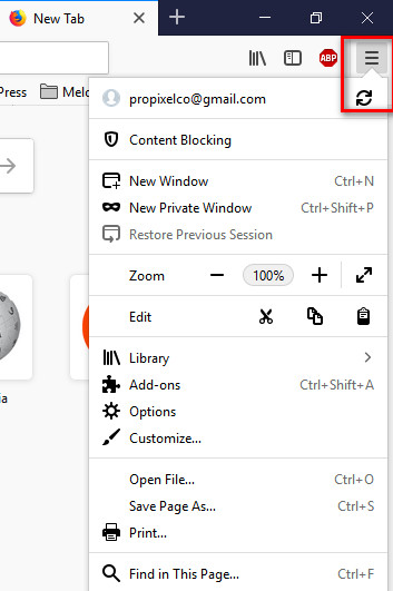 Delete Browsing History in Firefox
